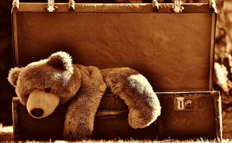 Brown Teddy Bear in Old Fashioned Suitcase